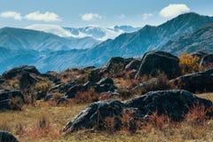 Ajardine nas montanhas de Altai, república de Altai, Rússia nave Fotografia de Stock