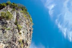 Ajardine a natureza com montanha da árvore e o oceano para o fundo Imagem de Stock Royalty Free