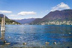 Ajardine no braço ocidental do lago de Como, Cernobbio, AIE Foto de Stock