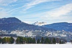 Ajardine no campo em Suíça nevado no inverno Foto de Stock