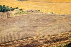 Ajardine no d'Orcia de Val (Toscânia) Imagens de Stock