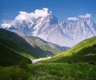 Ajardine no dia de verão ensolarado nas montanhas Fotografia de Stock Royalty Free
