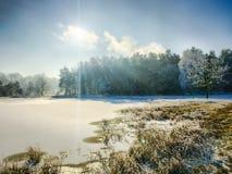 Ajardine no dia nebuloso do inverno de campos cobertos de neve e de florestas Fotografia de Stock Royalty Free