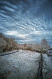 Ajardine no infravermelho do lago no campo inglês no verão Imagem de Stock Royalty Free