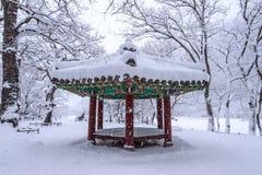 Ajardine no inverno com neve de queda em Seoul, Coreia Foto de Stock