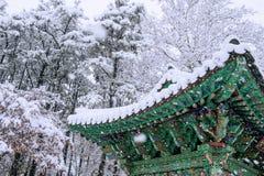 Ajardine no inverno com o telhado do gyeongbokgung e da neve de queda Imagem de Stock Royalty Free