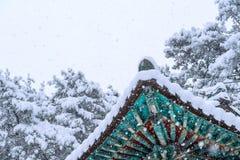 Ajardine no inverno com o telhado do gyeongbokgung e da neve de queda Foto de Stock