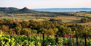 Ajardine no lago Balaton no por do sol, Hungria imagens de stock royalty free