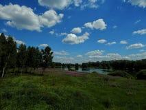 Ajardine no lago com costas verdes e o céu azul Foto de Stock