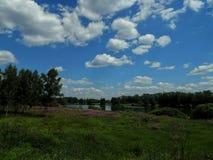 Ajardine no lago com costas verdes e o céu azul Foto de Stock Royalty Free