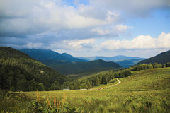 Ajardine no monte, com grama verde, árvores e o céu azul Foto de Stock Royalty Free