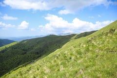 Ajardine no monte, com grama verde, árvores e o céu azul Foto de Stock