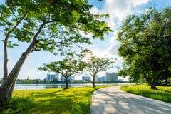 Ajardine no parque da cidade com o lago no fundo do por do sol Foto de Stock