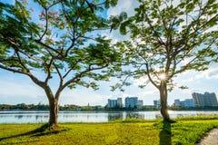 Ajardine no parque da cidade com o lago no fundo do por do sol Imagens de Stock Royalty Free