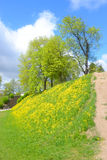 Ajardine no parque na fortaleza de Lappeenranta, Fotos de Stock