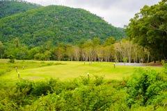 Ajardine no parque nacional de Kaeng Krachan da área de acampamento Foto de Stock Royalty Free