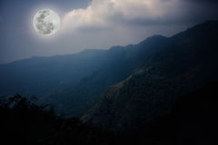 Ajardine no parque nacional, na floresta contra o céu e nas nuvens Imagem de Stock Royalty Free