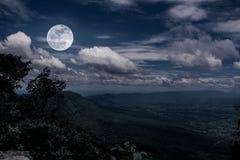 Ajardine no parque nacional, na floresta contra o céu e nas nuvens Fotografia de Stock Royalty Free