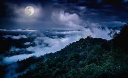 Ajardine no parque nacional, na floresta contra o céu e nas nuvens Ricketts Waterfall na angra da cozinha é uma cachoeira de cone Fotografia de Stock