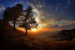 Ajardine no por do sol/nascer do sol - Dobrogea, Romênia Imagem de Stock