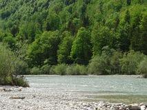Ajardine no rio Izar perto da mancha do vale, Baviera Imagens de Stock