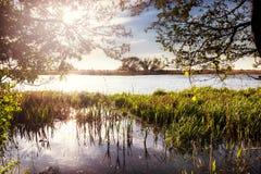 Ajardine no rio Nogat, mola, Polônia Imagem de Stock Royalty Free