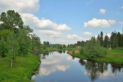 Ajardine no rio Oredezh em Vyritsa no verão Fotografia de Stock Royalty Free