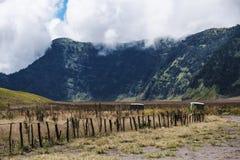 Ajardine no vale com grupo de jipes da aventura, conceito da viagem da aventura Fotos de Stock