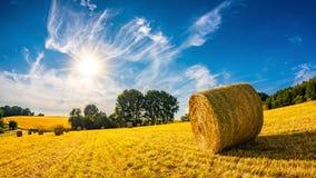 Ajardine no verão com pacotes de feno em um campo Imagem de Stock