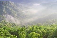 Ajardine no vulcão de Batur Imagens de Stock Royalty Free