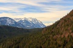 Ajardine nos cumes com partes superiores neve-tampadas da montanha no fundo Tirol, Áustria Imagem de Stock Royalty Free
