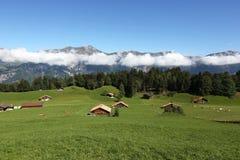 Ajardine nos cumes no Bernese Oberland, Suíça Fotos de Stock Royalty Free