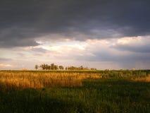 Ajardine nuvems tempestuosa sobre o campo e árvores em um dia de verão Foto de Stock