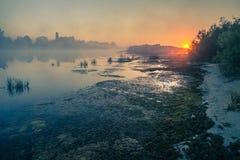 Ajardine, o alvorecer ensolarado, raios de sol na névoa Imagens de Stock Royalty Free