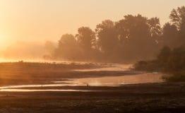 Ajardine, o alvorecer ensolarado, raios de sol na névoa Imagens de Stock