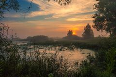 Ajardine, o alvorecer ensolarado, raios de sol na névoa Imagem de Stock Royalty Free