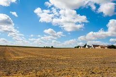 Ajardine o campo de grão segado em França, o Loire Valley Imagens de Stock