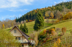 Ajardine o campo do outono com as casas da quinta de madeira no monte verde e nas montanhas no fundo, Alemanha Fotos de Stock