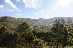 Ajardine o campo no phitsanulok do kla do rong do hin do phu da montanha Imagem de Stock Royalty Free