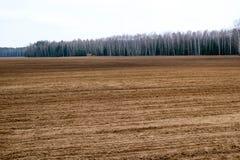 Ajardine o campo, terra acima escavada marrom com camas, sulco para arar, semeando a grão contra um fundo de uma floresta distant Foto de Stock
