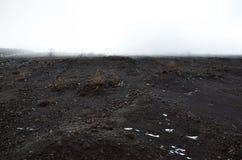 Ajardine o cenário com rocha vulcânica e névoa nebulosa Imagem de Stock Royalty Free