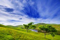 Ajardine o cenário do vale verde com árvores, rio e o b nebuloso Fotografia de Stock Royalty Free