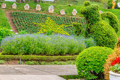 Ajardine o desighn com figura galope dos arbustos e o canteiro de flores com uma estrela foto de stock