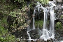 Ajardine o detalhe de cachoeira sobre rochas na exposição longa do verão Imagem de Stock