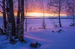 Ajardine o esboço de uma noite do ` s do inverno, negligenciando o lago Imagens de Stock