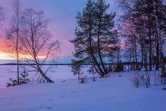 Ajardine o esboço de uma noite do ` s do inverno, negligenciando o lago Fotos de Stock Royalty Free