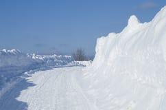 Ajardine o inverno Sibéria Imagem de Stock