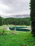 Ajardine o lago selvagem Misurina da natureza Imagens de Stock