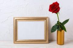 Ajardine o modelo do quadro do ouro com a rosa do vermelho no vaso Imagem de Stock