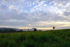 Ajardine o nascer do sol da manhã no pH do parque nacional de Thung Salang Luang Fotografia de Stock Royalty Free